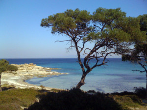 Karydi beach in Sithonia