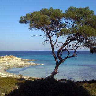 Halkidiki beach - Sithonia
